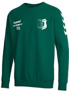 TSV 1865 Langewiesen Sweat